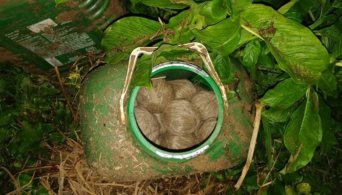 বিজেপি কর্মী খুনে আতঙ্কের রেশ কাটেনি, ফের নানুরে উদ্ধার তাজা বোমা