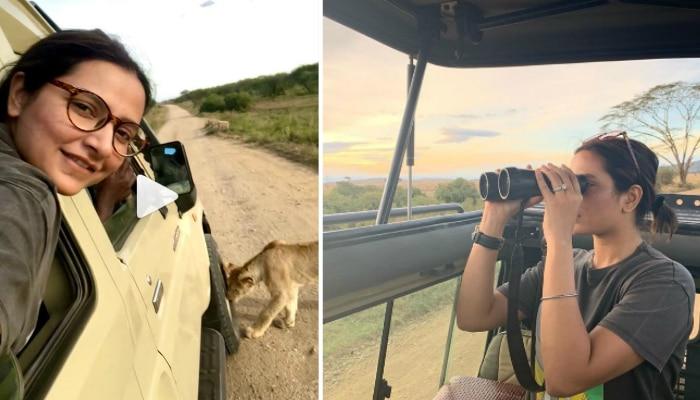 জিপের মধ্যে গুঁতো মারছে সিংহ, আফ্রিকার জঙ্গলের ভিডিয়ো পোস্ট রাজ-শুভশ্রীর
