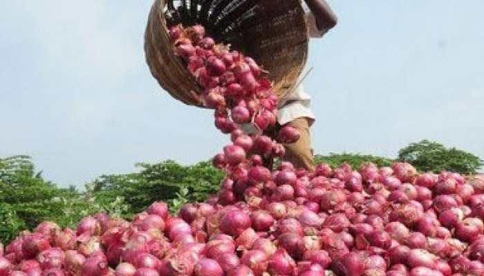 গুদামে পচছে পেঁয়াজ, ২২টাকা কেজিতে দিলেও কিনছে না রাজ্য, দাবি কেন্দ্রীয়মন্ত্রীর