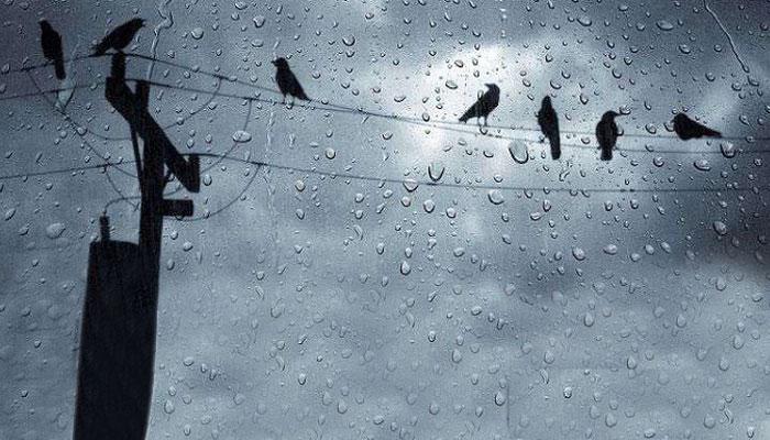 সপ্তাহান্তে বৃষ্টির পূর্বাভাস রাজ্যে, ফের শুরু হতে পারে শীতের নয়া ইনিংস