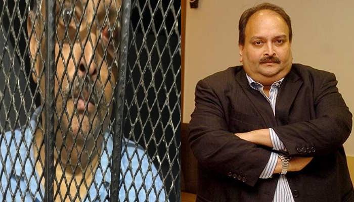 Mehul Choksi: 'ভারতেরই নাগরিক চোকসি', 'নিষিদ্ধ অভিবাসী' ঘোষণা Dominica এর
