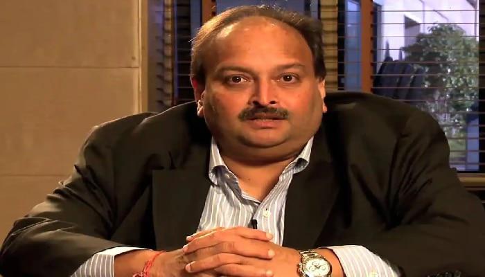 ডোমিনিকায় Mehul Choksi মামলায় যোগ দিতে হাইকোর্টে দরখাস্ত  CBI, বিদেশমন্ত্রকের