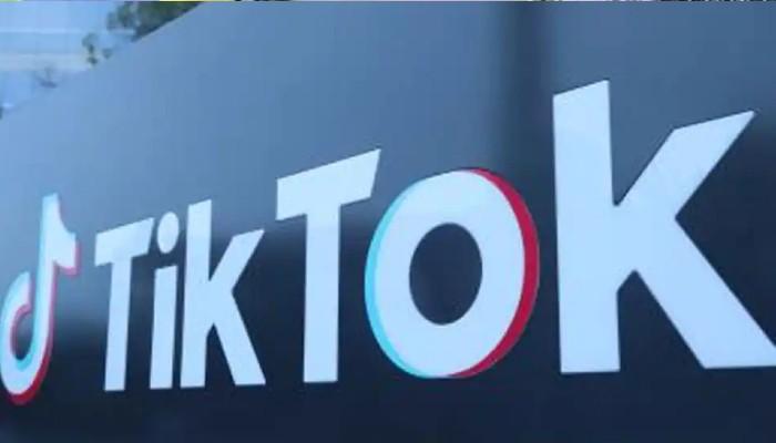 নয়া নামে ভারতে ফিরছে TikTok! থাকছে নানা চমক