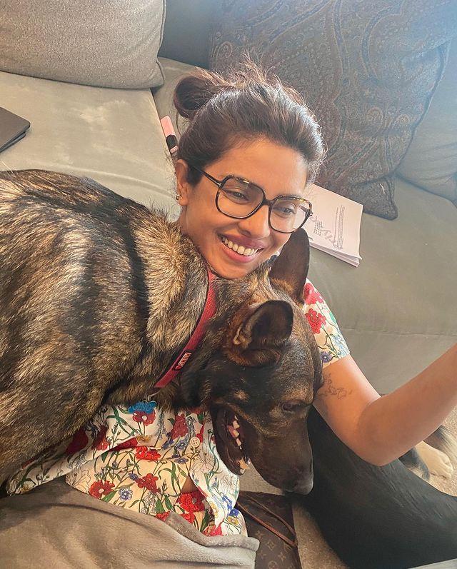 Priyanka Chopra chilling with her dogs