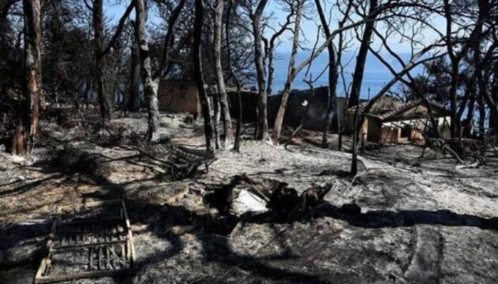 Burned houses: ঘরবাড়ি জ্বলছে