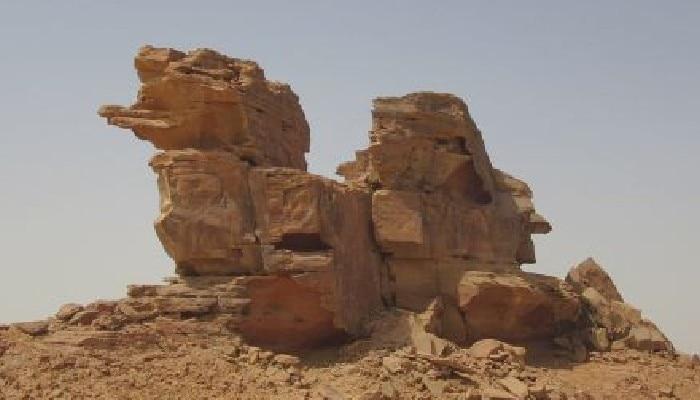 camel sculptures