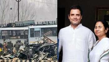 পুলওয়ামা-স্বীকারোক্তি পাক মন্ত্রীর, দেশকে এবার জবাব দিন মমতা, রাহুল: BJP