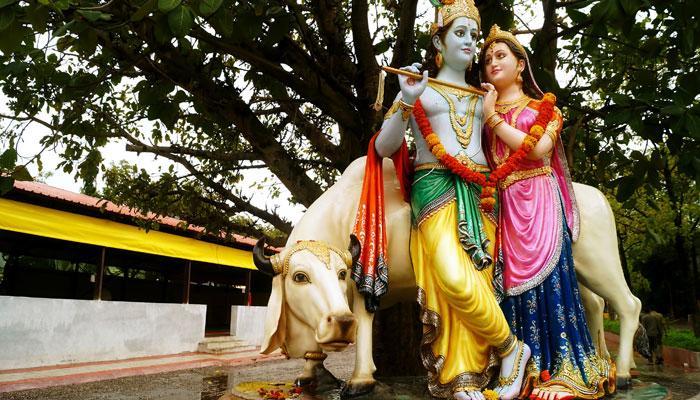 তীর্থস্থান হল বৃন্দাবন, বারসানা; নিষিদ্ধ ডিম, মাংস, মদ