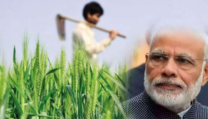 কী ভাবে ৩ বছরে কৃষকদের রোজগার দ্বিগুণ হবে? ভারতকে প্রশ্ন ইউরোপীয় ইউনিয়নের