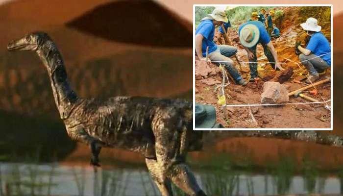 খোঁজ মিলল নতুন প্রজাতির ডাইনোসরের, হিংস্র বলে দাবি বিজ্ঞানীদের