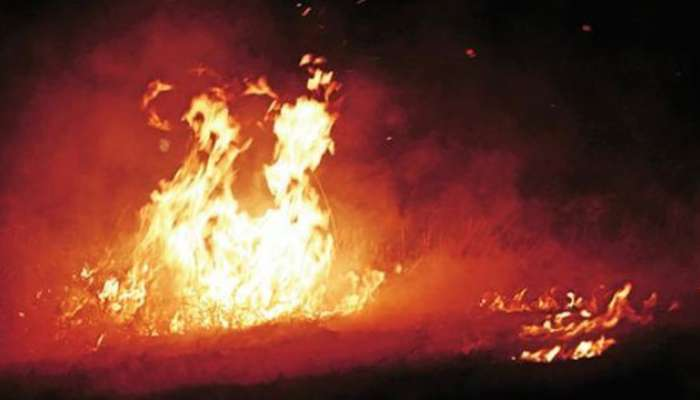 বোমা বাঁধতে গিয়ে মৃত্যু যুবকের, আহত বেশ কয়েকজন
