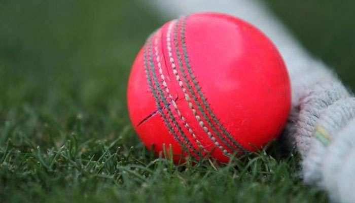গোলাপি বলে ভারতীয় দল প্রথম টেস্ট খেলতে পারে ইডেনে! ম্যাচ হবে দিন-রাতের