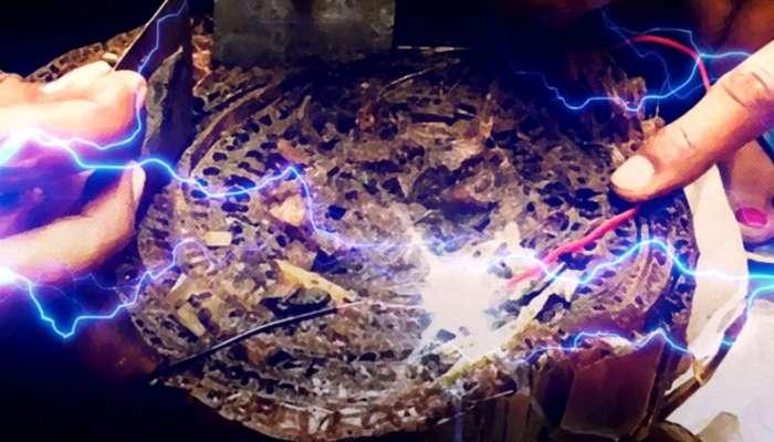 কলাগাছ থেকে বিদ্যুৎ উৎপাদন করে NASA থেকে ডাক পেলেন বিহারের যুবক!