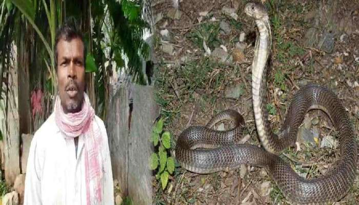 ৩২ বছরে ৭২ বার Cobra-র কামড় খেয়েছেন এই ব্যক্তি! সাপ (Snake) কি প্রতিশোধ নেয়?