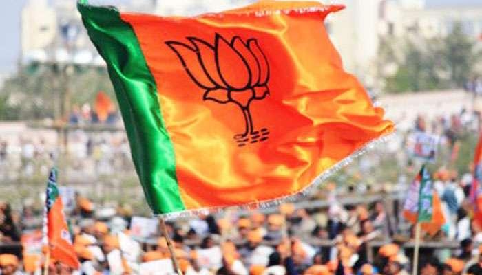 দলীয় পতাকা নয়, জাতীয় পতাকা ও স্বামীজির ছবি নিয়ে এবার BJP-র মেগামিছিল