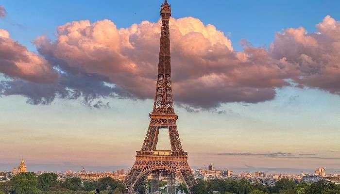 Eiffel Tower: বন্ধ ছিল ৯ মাস! অবশেষে খুলে দেওয়া হল পর্যটকদের জন্য
