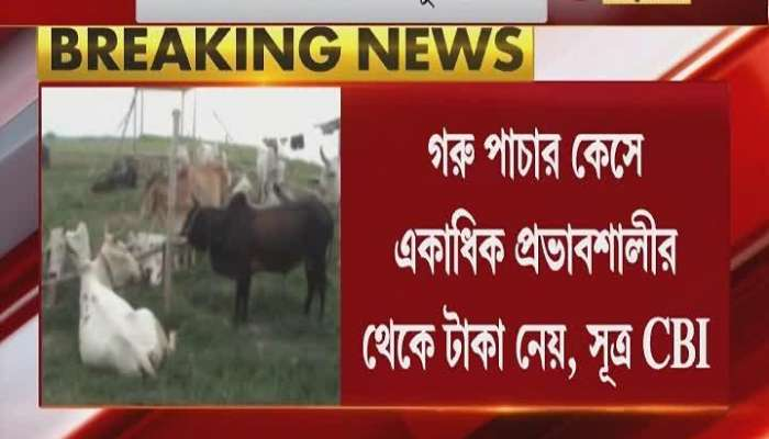 Sudipto RaiChowdhury's name is involved in cow smuggling, money from more than one influential person!