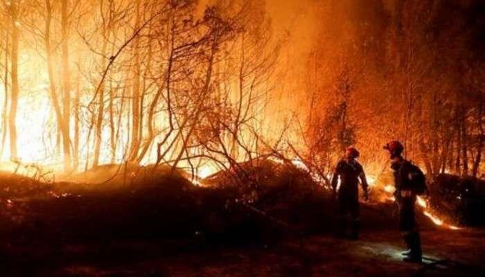 Greece wildfire: দাবানলের আগুনে পুড়ছে গ্রিস, ইউরোপজুড়ে ভয়ঙ্কর দাবদাহ