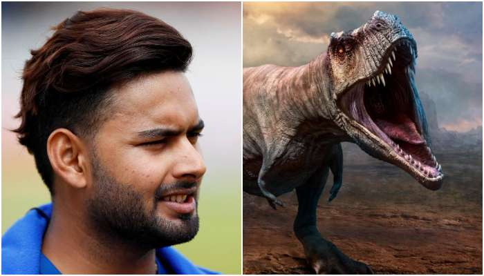 Rishabh Pant: মিউজিয়ামে ঢুকে পন্থ কথা বলছেন ডায়নোসরের সঙ্গে! অবাক সতীর্থ