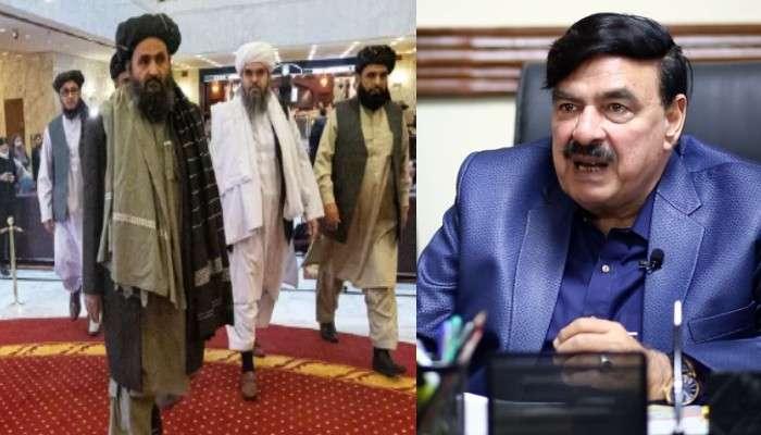 'Pakistan-এ Taliban নেতাদের জন্ম, প্রশিক্ষণ', স্বীকার করলেন পাক মন্ত্রী, Video