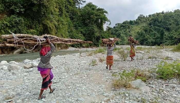 Dooars: দীর্ঘ সময় ডুয়ার্সের সমস্ত 'নদী বন্ধ' থাকায় পুজোর আগে হাতে টাকা নেই স্থানীয়দের
