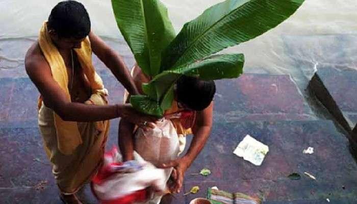 #উৎসব: মহাসপ্তমীর কলাবউ পুজো আসলে কৃষিসভ্যতারই উদযাপন