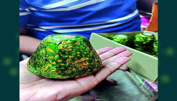 Green crackers: সবুজ বাজি আসলে কী? জেনে নিন বিভিন্ন তথ্য